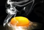 egg-601508_1280