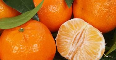citrus-2394_1280